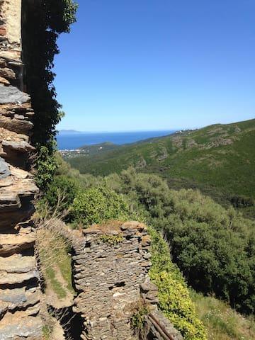 Bel appartement vue sur mer et maquis du Cap Corse - Rogliano - Pis