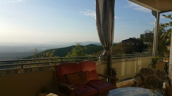 Guest house Evdoshvili 5