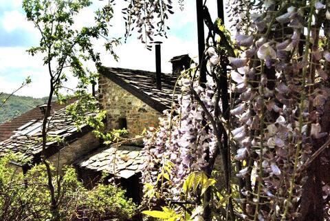 Anselmo and Greta cottages
