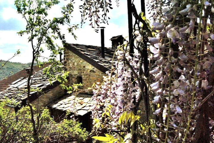 Anselmo e Greta cottages