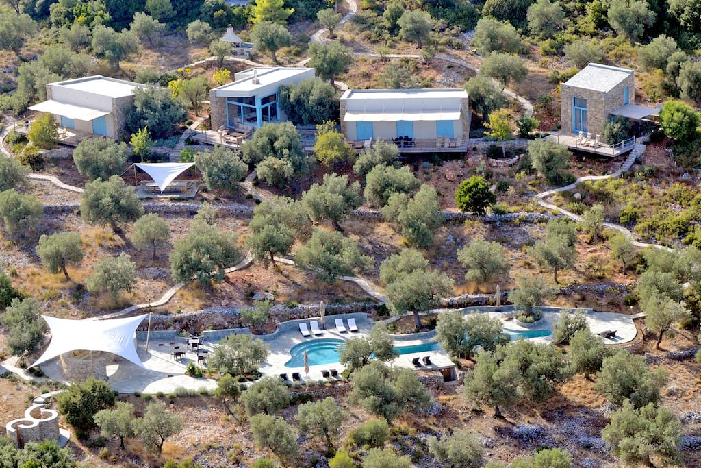 The villa, the olive grove, the swimming pool.