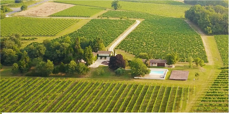 Bordeaux Vineyard Villa