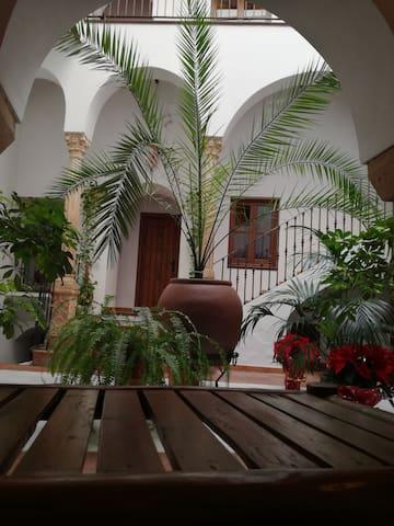 Casa Maika - Montoro - Pension