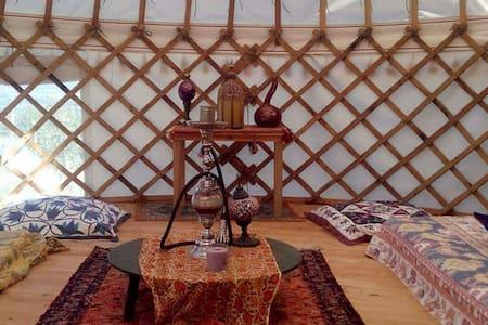 Traditional Yurt - Seydikemer - Bed & Breakfast