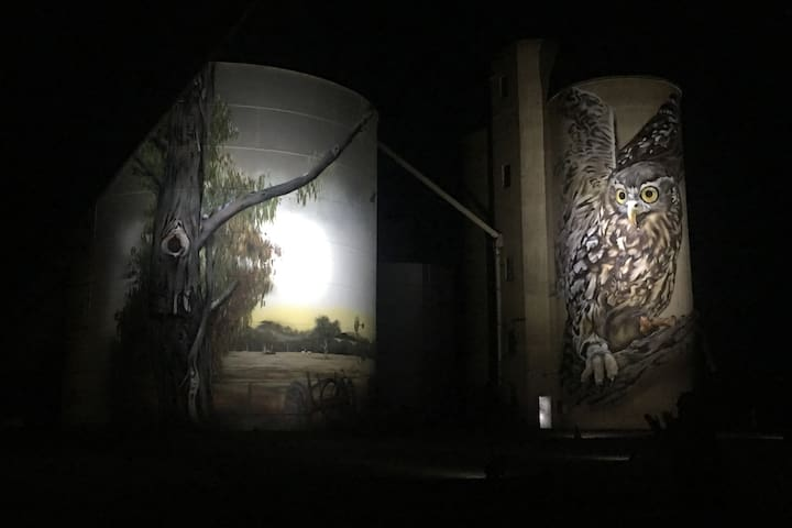 Silos (painted by Jimmy DVate) lit up at night in nearby Goorambat.