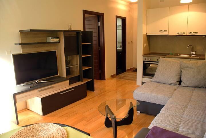 Foka Spa and Wellness  apartment 11 Kopaonik