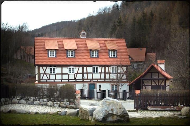 Dom Tkacza, pokój Tkacz Adamaszku - Pieszyce - Apartament