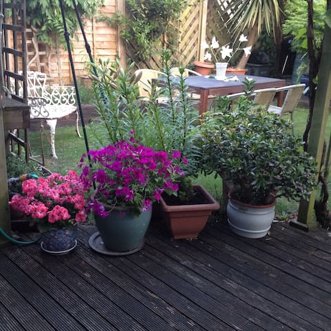 Private room & bathroom in central Chichester - Chichester - Haus