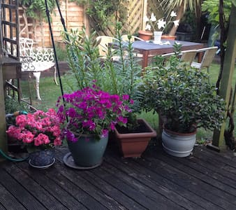 Private room & bathroom in central Chichester - Chichester - House