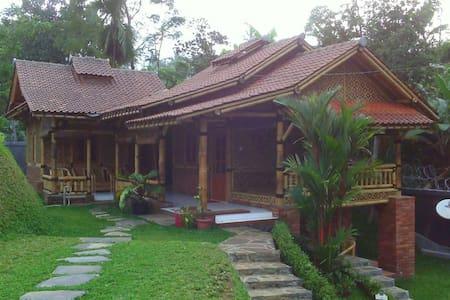 WI bacpaker village house blitar - Kepanjenkidul
