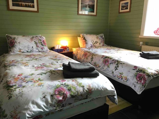 Green room with two single beds