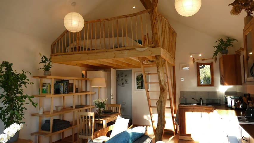The Nest,  cosy eco-friendly studio, dogs welcome