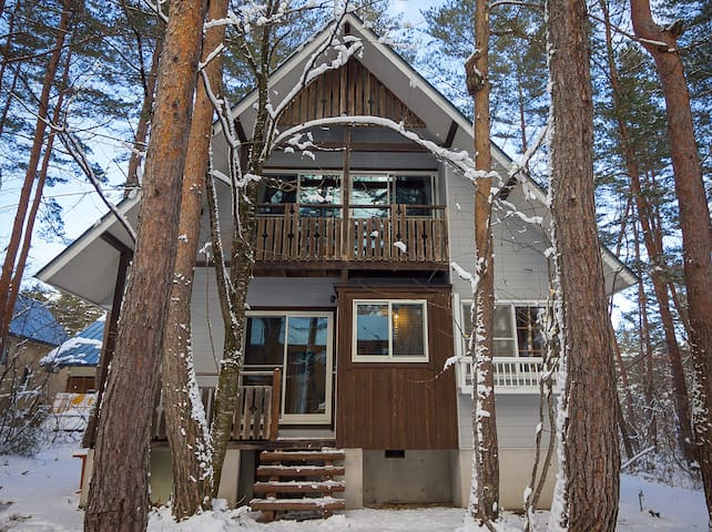 Larch Peak chalet - Hakuba - บ้าน