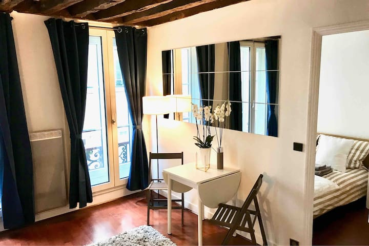 Lovely Apartment in the Heart of Saint-Germain
