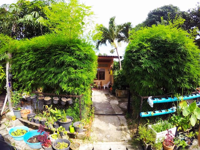 Cozy Kata house with the garden