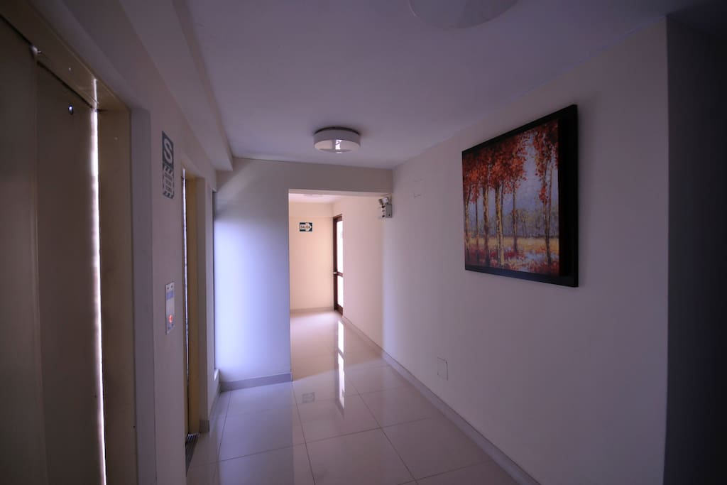 entrance to the apartment's floor