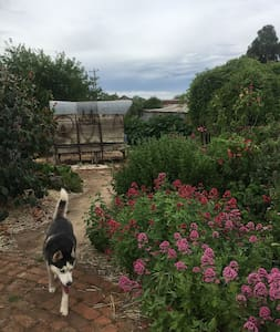 Central Springs Studio - Eco Retreat and Farmstay - Drummond - Guesthouse - 1