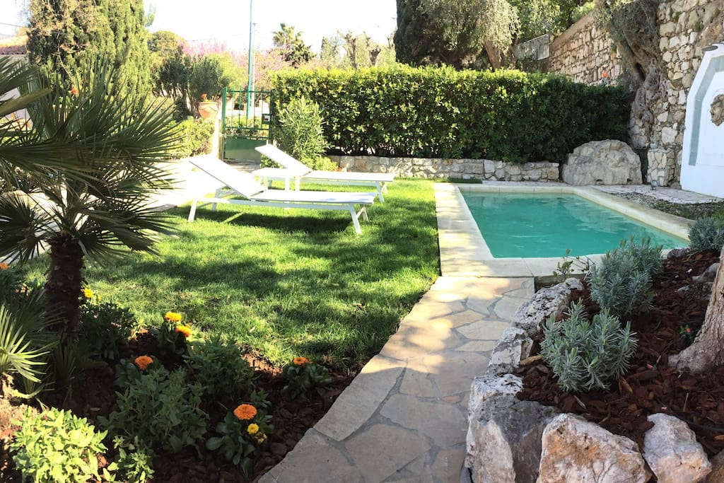 Enjoy our private garden and pool sunbathing or reading under the century old olive trees.