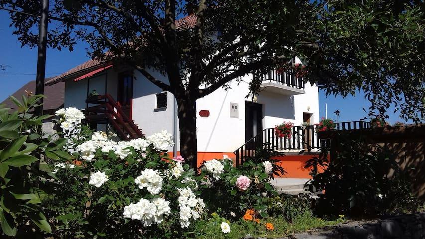 APARTMANI RELJA - Selište Drežničko - Apartament