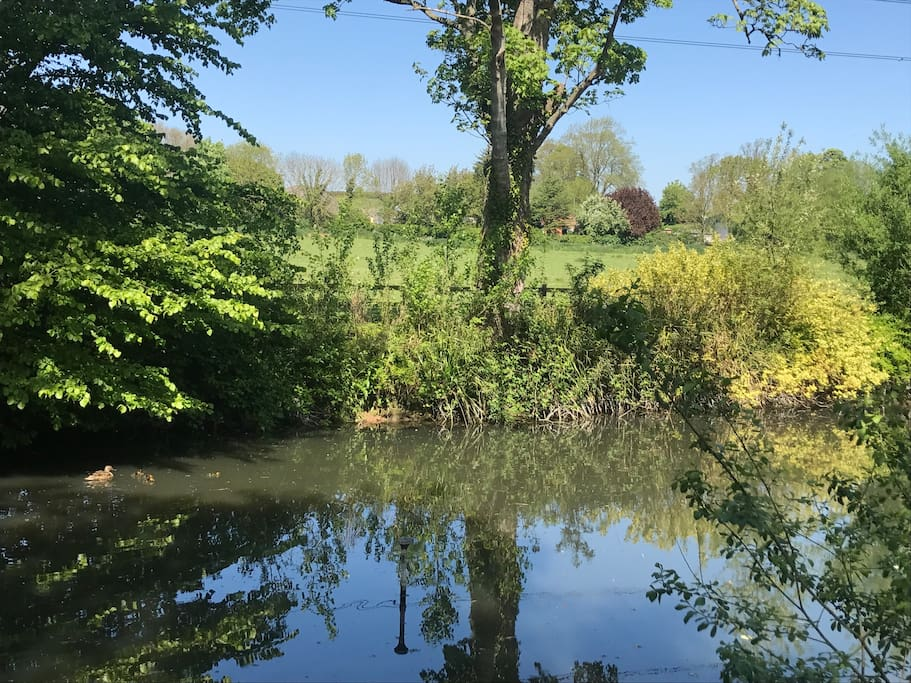 The pond that is situated next to our shepherds hut often has ducks and moor hens living here. This is the view our Shepherds Hut has.. over the peaceful pond and Nottinghamshire's countryside at its finest.