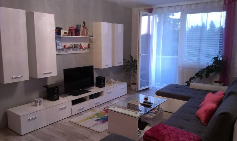 Nice and big 2-room flat in a great location - Nitra