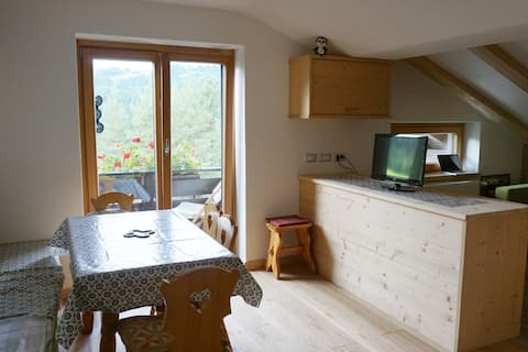 Cosy nest in the heart of the Dolomites!