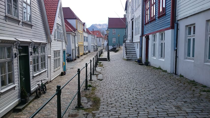 Quaint and peaceful apt city center - Bergen - House