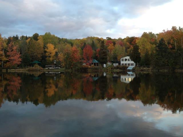 La Baie des Libellules - Lac-des-Loups - Chalupa