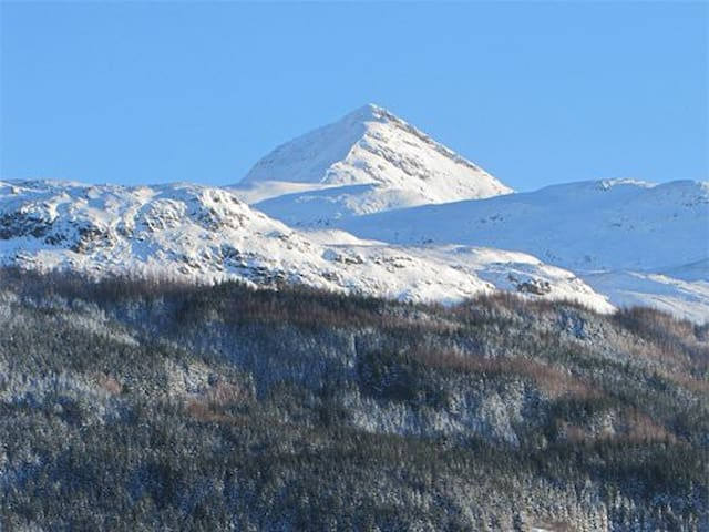 Ben Lomond view from Toll House