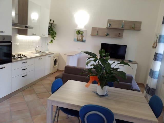 Appartamento piano terra con cortile privato