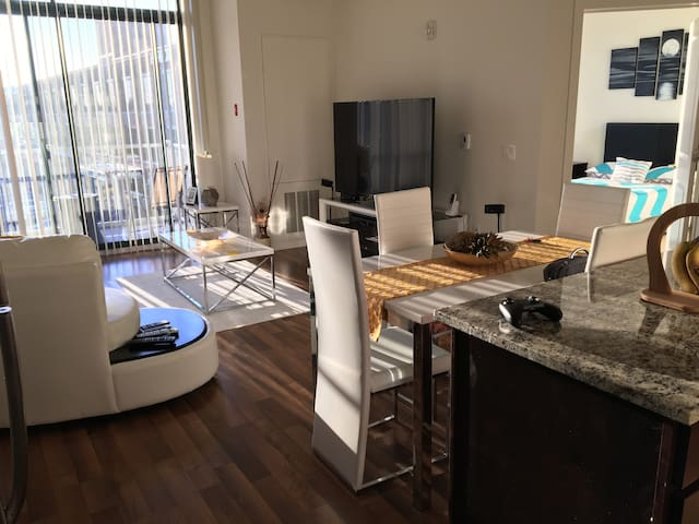 Private Apartment,Heart of Harbor Point/ Downtown - Stamford - Lägenhet