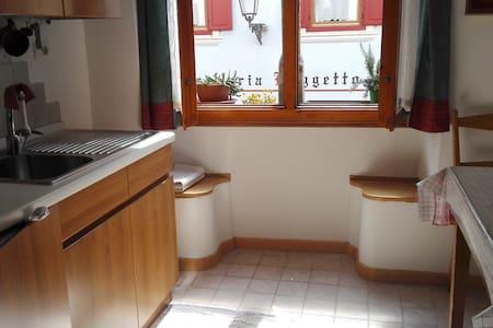 Appartamento in centro circondato dalle Dolomiti - Fiera di Primiero - Pis