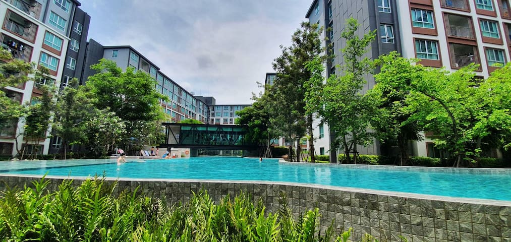 (N294) D Condo Ping Chiang mai for rent