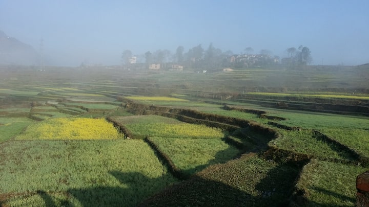 Queen room in the ricefields