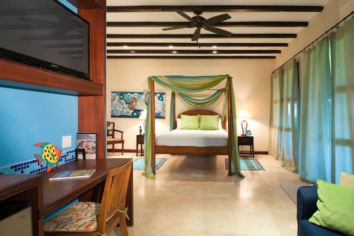 Studio Apartment in Luxury Villa — Ocean Suite - Charlestown - Gastsuite