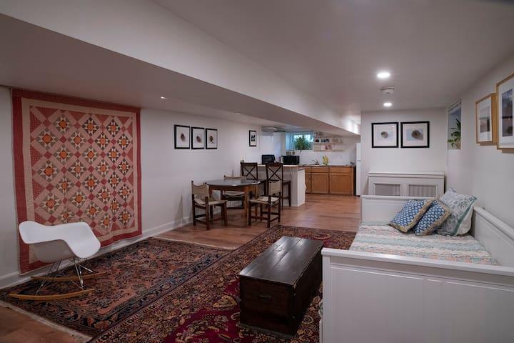 Light, open basement in St Clair West Village
