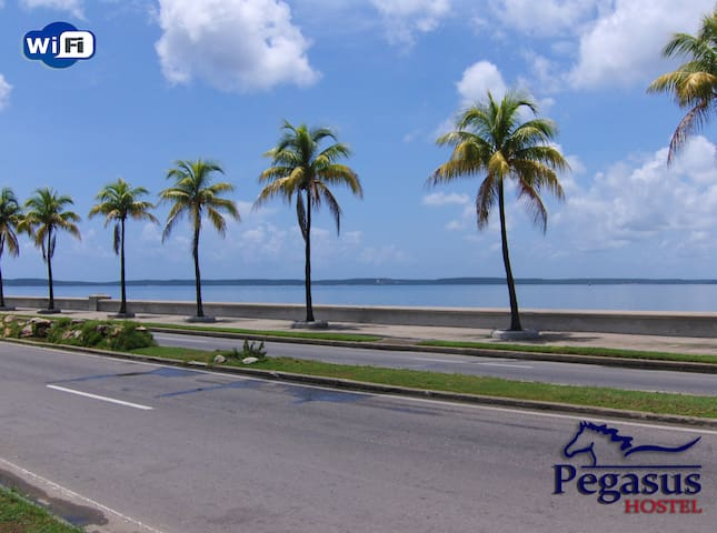 Pegasus is spaciousness & comfort at the Seawall ღ - Cienfuegos - 一軒家