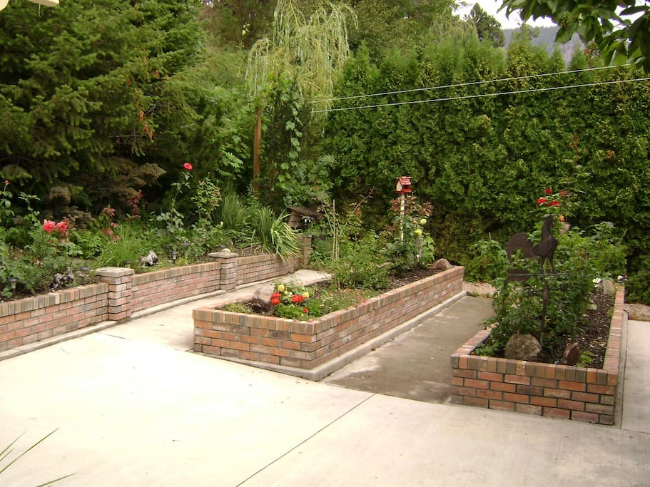 Patio/Garden area