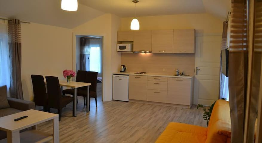Apartment Vilma in Palanga - Palanga - Apartemen
