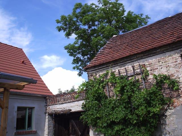 Gemütliches Ferienhaus direkt an der Havel