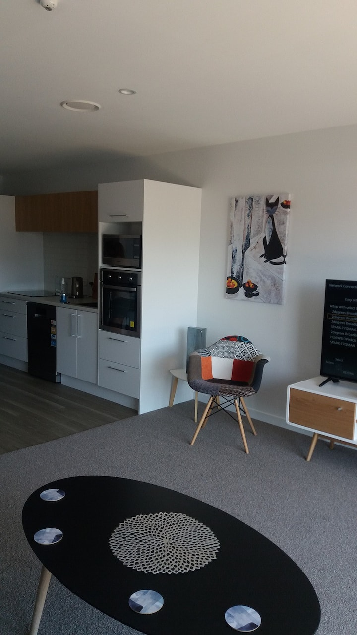 1 Bedroom apartment  in the heart of the city 202
