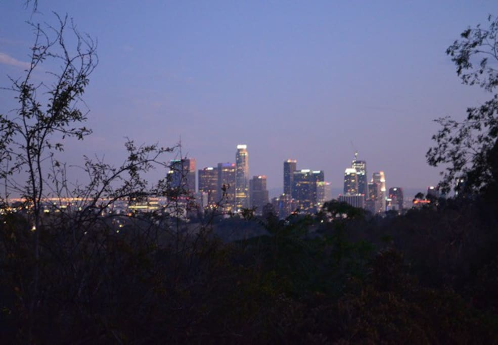 City view at night from front terrace.