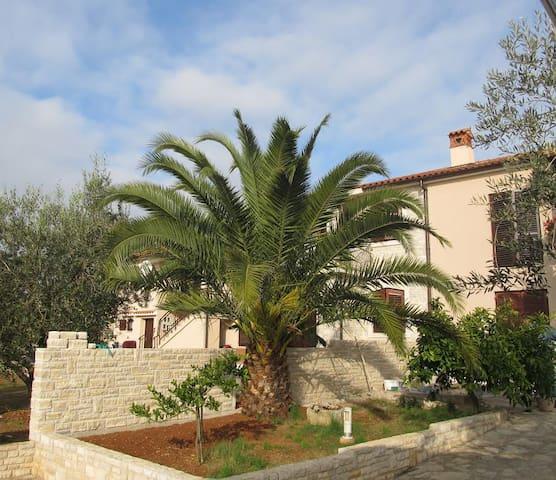 Villa Pietra for 6 pax in Istria - Galižana - Hus