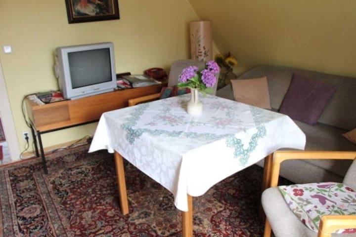 Das Wohnzimmer mit Satellitenfernsehen und WLAN (Internet)