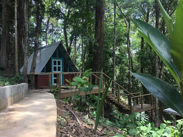 Tree Cabin M- Walking Distance to Great Surf
