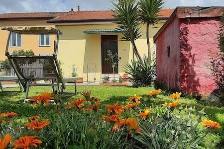 Casa Vacanze Avana ( codice CITRA 011011-LT-0001 )