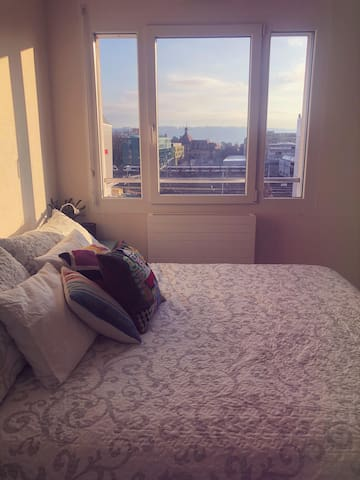 One large, well-lit double-bedroom to rent