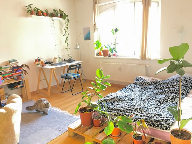 Bright cosy room in calm Prenzlauer Berg