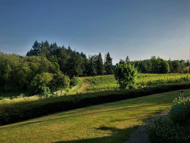 Your Vineyard & Winery Getaway