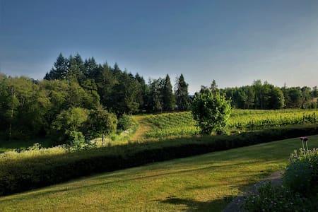 Your Vineyard & Winery Getaway